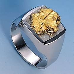 Ring mit Golden Retriever